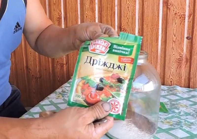 Вкусный квас из цикория дома, быстрый рецепт кваса