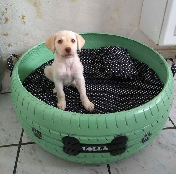 Лежак для собаки или кота из автомобильной шины